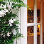 Posting a picture of how the jasmine around our back door SHOULD look. Taken last year...full of fragrant white flowers. Instead, this year it's brown and crispy with not a single flower, thanks to all the late frosts. 😠 I'm trying to remember the smell... . . . #jasmine #myhome #myhomestyle #mygarden #myhomevibe #englishgarden #whitejasmine #cornersofmyhome #countryliving